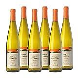 Vino blanco Viñas del Vero Riesling Coleccion de 75 cl - D.O. Somontano - Bodegas Gonzalez Byass (Pack de 6 botellas)