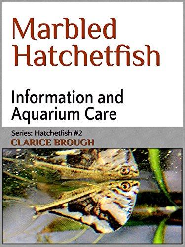 Marbled Hatchetfish (English Edition)