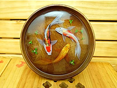 VIHAFA Handicraft 3D Fish Painting - Fine Art 3D Picture in Bowl - Gift for Decoration - Paintings in Coconut Bowl and Rattan Basket