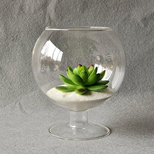 BigFamily Clear Cup Shape Hydroponic Contenedor DIY Home Table Wedding Garden Decoration Glass Hanging Vase Bottle Plant Pot Flower DIY