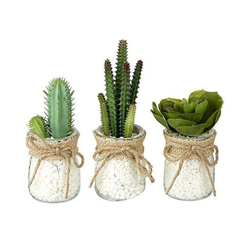 3 künstlicheMiniatur-Kakteen / Sukkulenten (Zimmerpflanzen) in durchsichtigem Glas-Blumentopf mit weißen Kieselsteinchen
