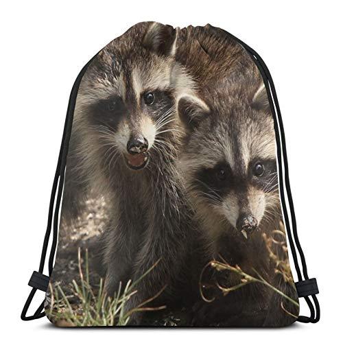 Perfect household goods Raccoons - Mochila para parejas y gemelos, ligera, para gimnasio, viajes, yoga, bolsa de hombro para senderismo, natación, playa