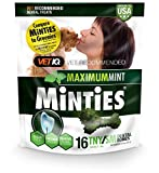 VetIQ Minties Dog Dental Bone Treats, Dental Chews...