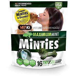 VetIQ Minties Dog Dental Bone Treats, Dental Chews for Dogs, (Perfect for Tiny/Small Dogs Under 40 lbs)