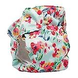 No Prep Organic Cloth Diaper – Smart Bottoms Dream Diaper 2.0 – Washable, Reusable – Natural Fiber Interior (Aqua Floral)