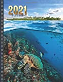 2021 Planner: Sea Turtle in Blue Ocean with Tropical Island / Daily Weekly Monthly / Dated 8.5x11 Life Organizer Notebook / 12 Month Calendar - Jan to ... Cover / Cute Christmas or New Years Gift