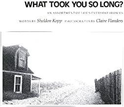 What Took You So Long: An Assortment of Life's Everyday Ironies