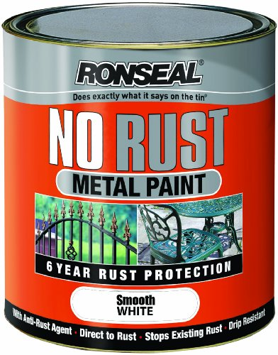 Ronseal NRSMWH250 250ml No Rust Metal Paint - Smooth Wh