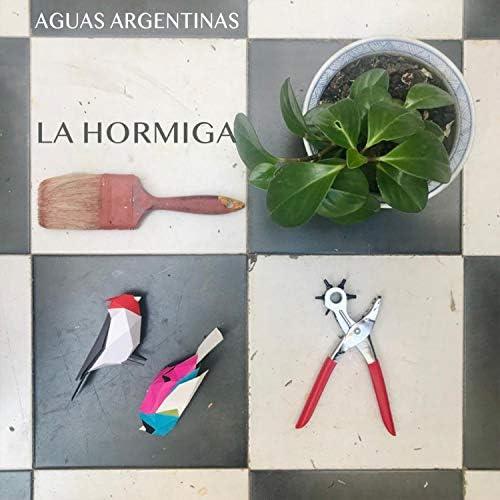 Aguas Argentinas feat. Emiliano Alvarez