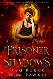 Prisoner of Shadows (Lords of the Underworld Book 2)
