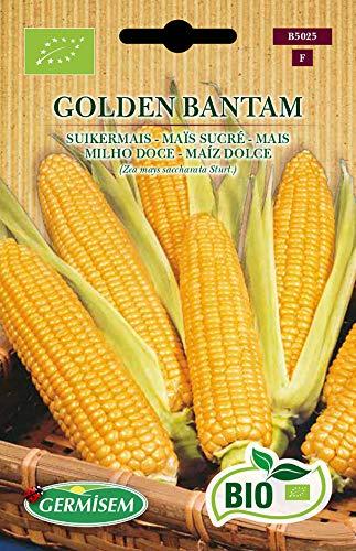 Germisem Orgánica Golden Bantam Semillas de Maíz Dulce 7 g