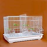 Liangzishop Avanzada Breeding Bird Cage for Finch Canarias Budgie - Gran pájaro de Metal Jaula de Viaje Jaula de pájaro con una partición (Blanco) (Color : A)