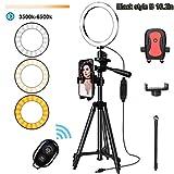 XDDXIAO Ringlicht mit Stativ für Kamera YouTube Video Aufnahmen Dimmbar LED Make up Ring Lamp mit 3 Farbe und 11 Helligkeitsstufen Fotografie Beleuchtung Set, Black Style b,10.2 in