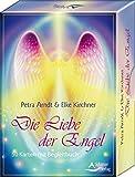 Die Liebe der Engel: 50 Karten mit Begleitbuch - Petra Arndt