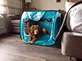 Bark Brite Pop Open Collapsible Travel Crate in 2 Sizes (Extra Large)