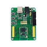 AILOVA Tablero De Desarrollo De Controlador Transceptor Inalámbrico Módulo 2.4GHz CC2538 6LoWPAN para Sistema Contiki W/PA