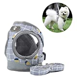 <span class='highlight'><span class='highlight'>Anlitent</span></span> Soft Mesh No Pull Dog/Cat Harness and Lead Set for Walking, Escape Proof Dog Vest Harnesses for Puppy Small Animals/Cats, Easy Fit Dog Collar (Large, Grid-Grey)