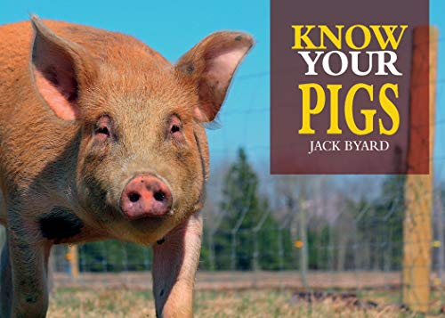 Know Your Pigs (English Edition)