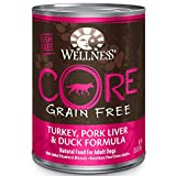 Wellness CORE Natural Wet Grain Free Canned Dog Food, Turkey, Pork & Duck, 12.5-Ounce Can (Pack of 12)