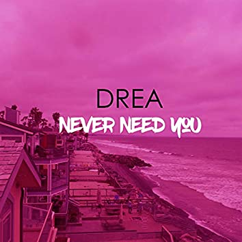 Never Need You