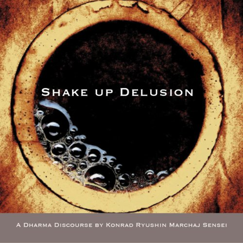 Shake Up Delusion audiobook cover art