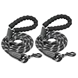 Beinhome 2PCS Hands Free Dog Leash for Running Walking Jogging Hiking,Retractable Bungee Dog Running Waist Leash for Small to Medium Dogs,Adjustable Waist Belt,Reflective Stitches