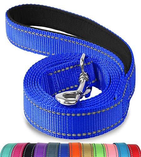 Joytale Hundeleine, Reflektierende Leine aus Nylon mit Gepolstertem Griff, 1.2m × 2cm, Navy blau