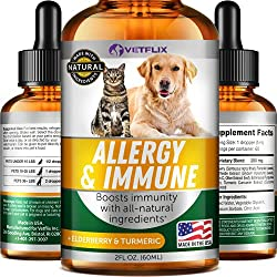 Dog Itch Remedies