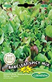 Germisem Baby Leaf Spicy Mix Semillas de Lechuga 2 g, EC6024