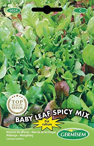 Germisem Baby Leaf Spicy Mix Semi di Lattuga 2 g