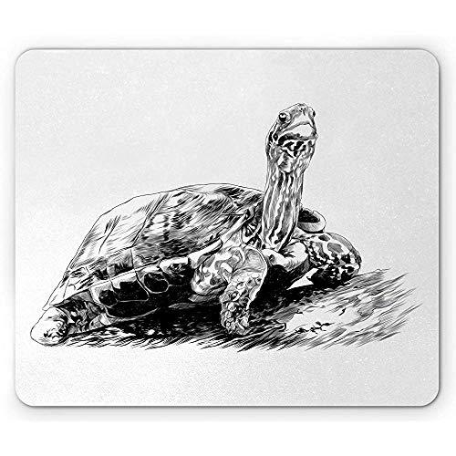 schildpad muis pad, monochroom patroon van potlood getekend als schets schepsel hand getekend geïnspireerd, houtskool grijs wit