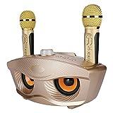 Zerone Karaoke-Mikrofon, kabellos, 2 Taschenmikrofone, Karaoke-System zu Hause, Karaoke-Karaoke-Karaoke-Karaoke-Karaoke-Karaoke-Lautsprecher, für Hotelplayer, Partys zu Hause