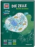 Naturwissenschaften easy! Biologie. Die Zelle: Baustein des Lebens