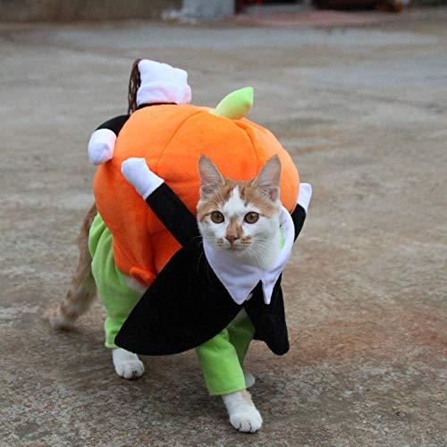 LIRUI grappige huisdier kat hond kostuums hond kleding kleding voor halloween cosplay verplaatsen pompoen kostuum puppy jas mantel kat hond accessoires