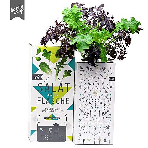 BottleCrop NEUHEIT 2020 - Bunter Senf-Mix | SPICY MUSTARD | Salat aus der Flasche | Anzuchtsystem | Urban Farming | Hydrokultur
