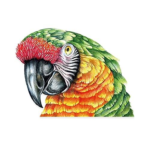 Maksim-003 14 * 10.5cm Pájaro misterioso Pájaro Parrot Etiqueta engomada del coche PVC Pegatinas para el parachoques de la ventana del coche personalizado Motorycle Skilleless Stickers