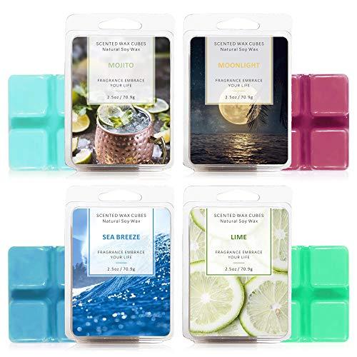 LA BELLEFÉE Cubos de Cera Soja Aromáticos Derretidos Perfumadas Fragancias Aliviar el Estrés Aromaterapia Regalo para Halloween Cumpleaños