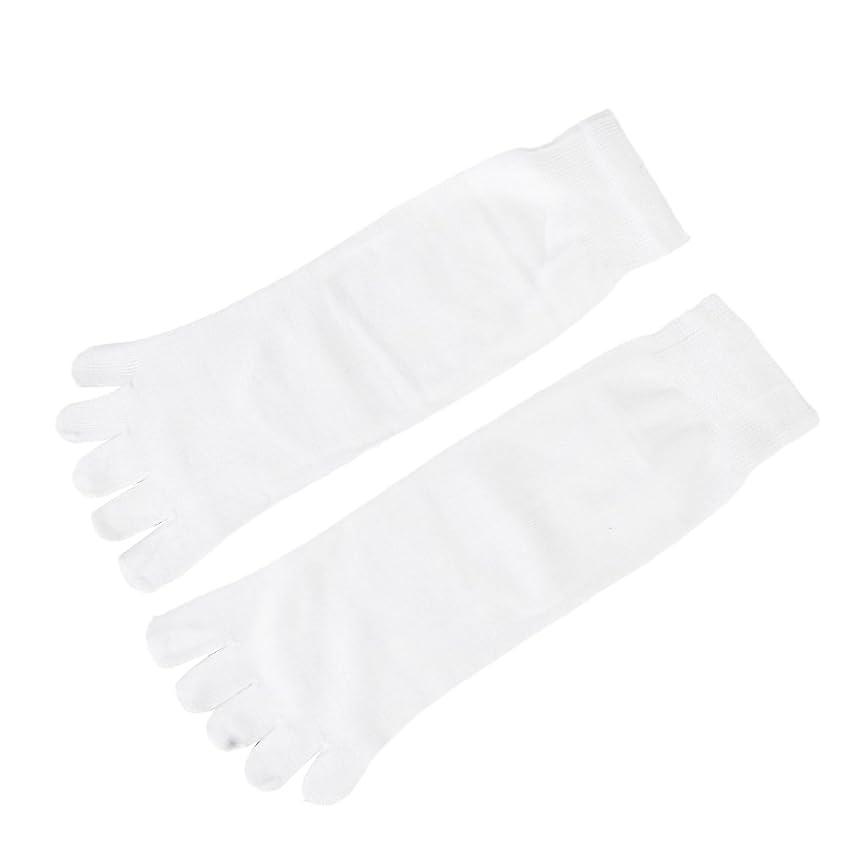【Footful】ソックス 靴下 くつ下 五本指ソックス サポートソックス 全4色 (ホワイト)