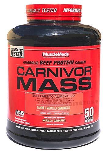 Carnivor Mass I Beef Protein I Mass Gainer I Weight Gainer I Masseaufbau (Vanilla Caramel)