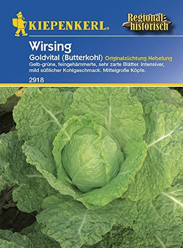 Gemüsesamen - Wirsing Goldvital (Butterkohl) von Kiepenkerl