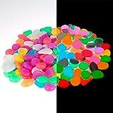 QH-Shop Piedras Luminosas Vistoso Piedras Decorativas Guijarros para Pecera Pasarelas Camino Patio de Césped 100 Piezas