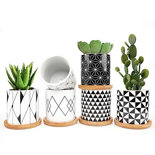 ONEHAUS Lot de 6 mini pots de fleurs/plantes grasses, avec mini coupelle en bambou, 7,3 cm, pour jardin/balcon/bureau/anniversaire