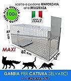 MEDICALMONO GABBIA TRAPPOLA MAXI 82 CM PROFESSIONALE RINFORZATA E ZINCATA DI ALTA QUALITA' PER LA CATTURA DI ANIMALI MEDI: GATTO, VOLPE, NUTRIA, MARMOTTA. CM 82 X 32 X37 H FABBRICATA IN ITALIA NO CINA