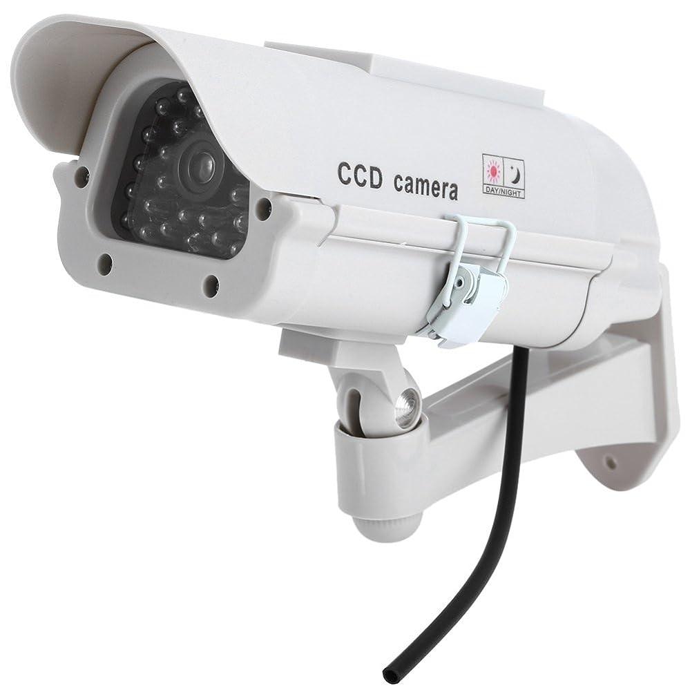 かるヒューマニスティック吸収剤EbuyChX ソーラー エネルギー リアル ダミー 監視 セキュリティ CCTV ステッカー カメラ グレー