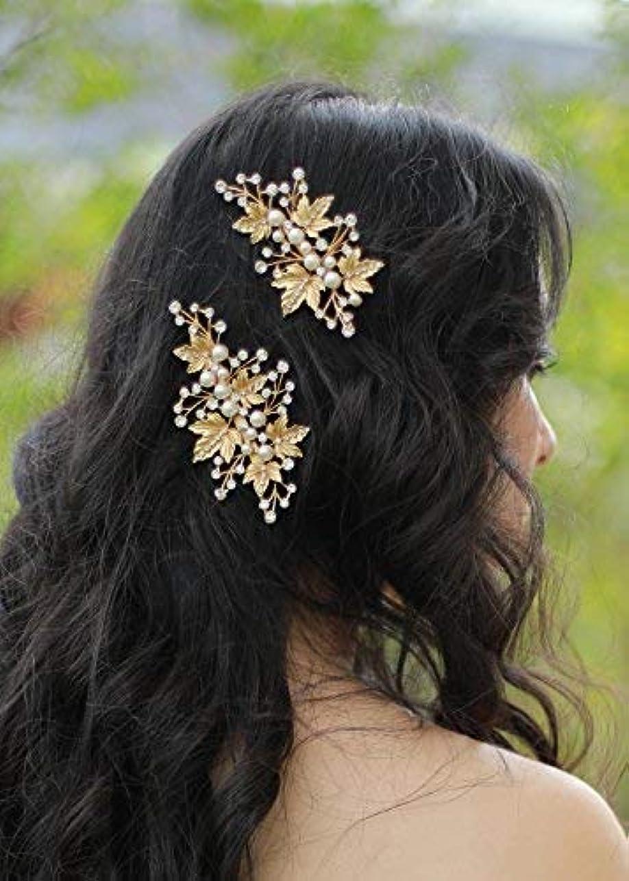 回復するメロン干渉FXmimior Bridal Vintage Hair Comb Women Vintage Wedding Party Crystal Rhinestone Vintage Headpiece Hair Accessories set of 2 [並行輸入品]