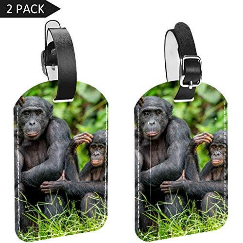 LORVIES Bonobo met een baby Afrika Dieren Bagage Tags Reizen Labels Tag Naam Kaarthouder voor Bagage Koffer Tas Rugzakken, 2 PCS