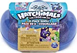 Hatchimals CollEGGtibles, Mermal Magic 6 Pack Shell Carrying Case with Season 5 Hatchimals CollEGGtibles, for Kids Aged 5 and Up (Color May Vary)