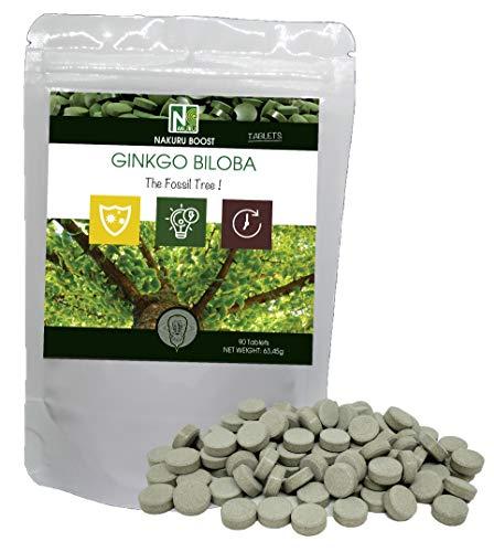 Ginkgo Biloba / 90 Tabletten van 705mg / NAKURU Boost/Koudgeperst poeder/Analyseren en verpakken in Frankrijk/De Fossiele Boom!