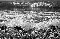 大人のためのZSCTWCL500ピースパズル-海の急上昇-最高のパズル