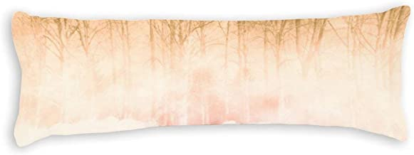 Nature Sky Natural Landscape Sunlight Body Pillow Covers 20 x 54 with Zipper Body Pillowcase Cotton Bed Body Pillow Cases ...